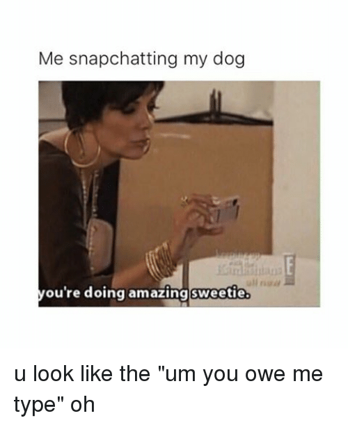 You Re Doing Amazing: Me Snapchatting My Dog You're Doing Amazing Sweetie U Look