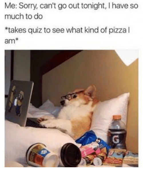 out tonight: Me: Sorry, can't go out tonight, I have so  much to do  *takes quiz to see what kind of pizza l  am*  G