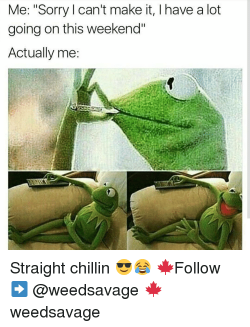 """Memes, 🤖, and Chillin: Me: """"Sorry can't make it, l have a lot  going on this weekend""""  Actually me Straight chillin 😎😂 🍁Follow ➡ @weedsavage 🍁 weedsavage"""