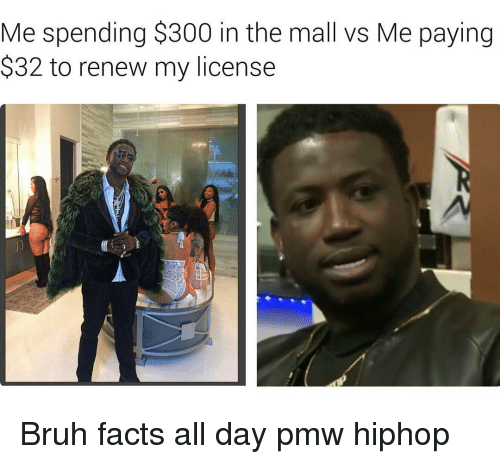 Memes, 300, and Hiphop: Me spending $300 in the mall vs Me paying  S32 to renew my license Bruh facts all day pmw hiphop