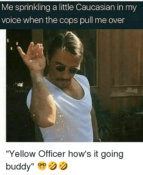 """Memes, Caucasian, and Voice: Me sprinkling a little Caucasian in my  voice when the cops pull me over """"Yellow Officer how's it going buddy"""" 🤓🤣🤣"""