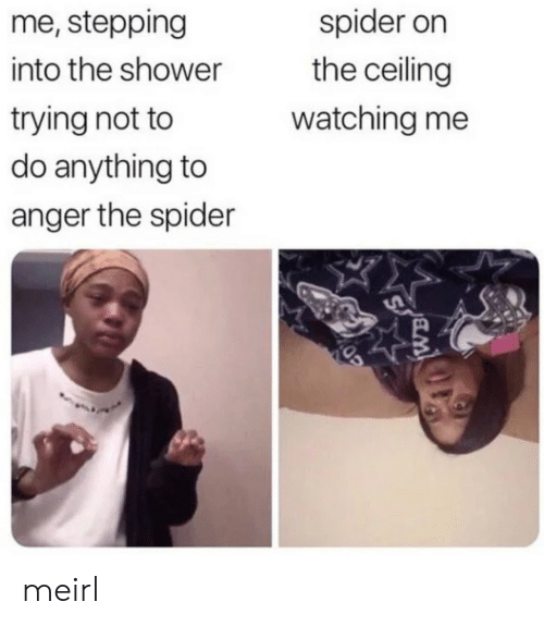 Stepping: me, stepping  spider on  the ceiling  into the shower  trying not to  do anything to  watching me  anger the spider meirl