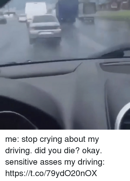 Crying, Driving, and Funny: me: stop crying about my driving. did you die? okay. sensitive asses   my driving: https://t.co/79ydO20nOX
