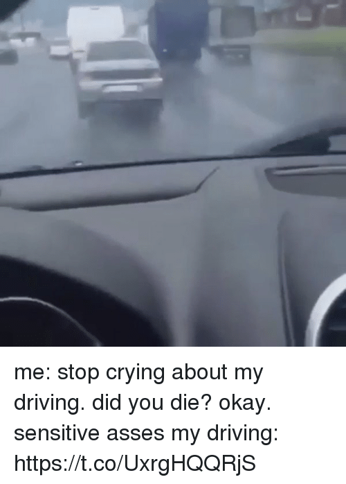 Crying, Driving, and Okay: me: stop crying about my driving. did you die? okay. sensitive asses   my driving: https://t.co/UxrgHQQRjS