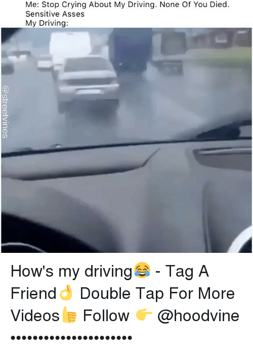 Hoodvine: Me: Stop Crying About My Driving. None Of You Died  Sensitive Asses  My Driving:  (D How's my driving😂 - Tag A Friend👌 Double Tap For More Videos👍 Follow 👉 @hoodvine ••••••••••••••••••••••