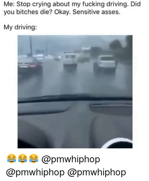 Memes, 🤖, and Stop: Me: Stop crying about my fucking driving. Did  you bitches die? Okay. Sensitive asses.  My driving: 😂😂😂 @pmwhiphop @pmwhiphop @pmwhiphop