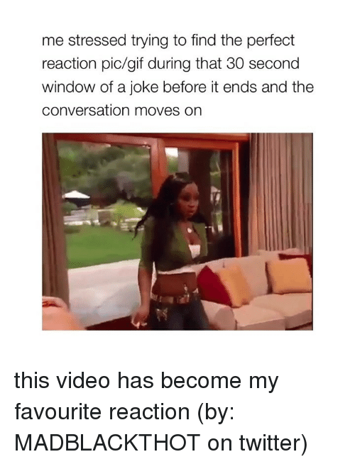 Gif, Twitter, and Video: me stressed trying to find the perfect  reaction pic/gif during that 30 second  window of a joke before it ends and the  conversation moves on this video has become my favourite reaction (by: MADBLACKTHOT on twitter)
