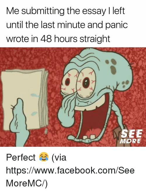Facebook, Memes, and facebook.com: Me submitting the essay I left  until the last minute and panic  wrote in 48 hours straight  MORE Perfect 😂  (via https://www.facebook.com/SeeMoreMC/)