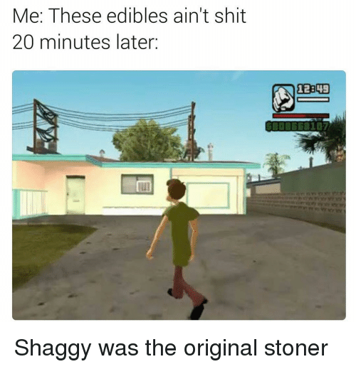 Memes, 🤖, and Stoner: Me: These edibles ain't shit  20 minutes later Shaggy was the original stoner