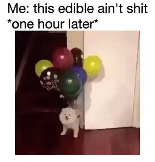 Memes, Shit, and 🤖: Me: this edible ain't shit  *one hour later
