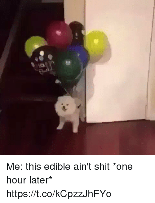 Funny, Shit, and One: Me: this edible ain't shit *one hour later* https://t.co/kCpzzJhFYo
