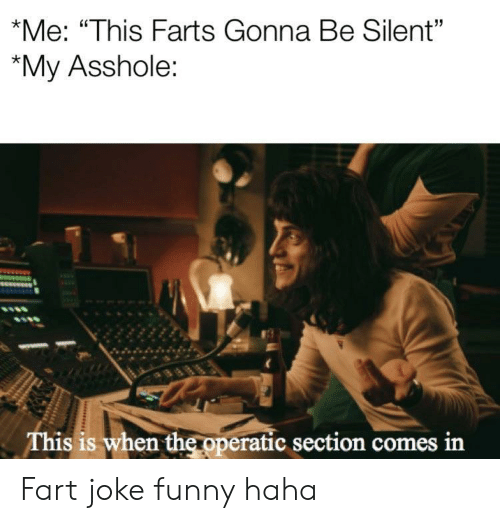 """farts: *Me: """"This Farts Gonna Be Silent""""  """"My Asshole:  This is when the operatic section comes in Fart joke funny haha"""