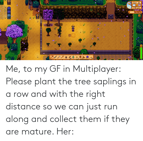 Run Along: Me, to my GF in Multiplayer: Please plant the tree saplings in a row and with the right distance so we can just run along and collect them if they are mature. Her: