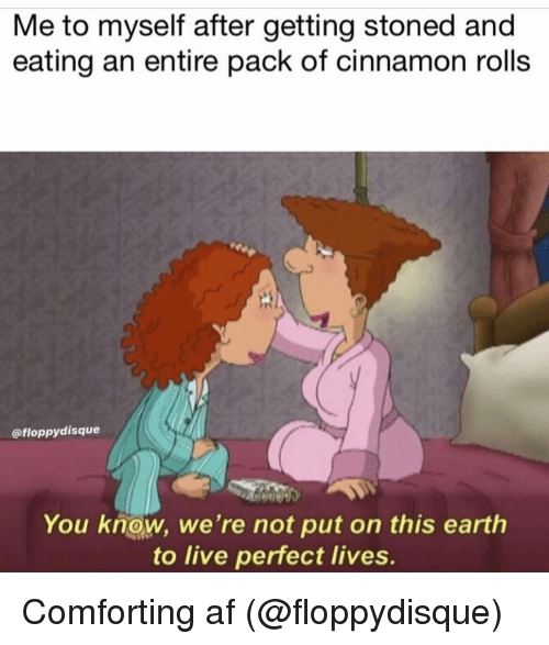 cinnamon rolls: Me to myself after getting stoned and  eating an entire pack of cinnamon rolls  @floppydisque  You know, we're not put on this earth  to live perfect lives. Comforting af (@floppydisque)