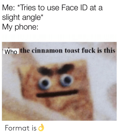 cinnamon: Me: *Tries to use Face ID at a  slight angle*  My phone:  Who the cinnamon toast fuck is this Format is👌