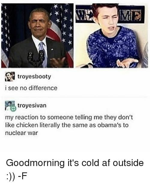 Af, Chicken, and Relatable: ME  troyesbooty  i see no difference  troyesivan  my reaction to someone telling me they don't  like chicken literally the same as obama's to  nuclear war Goodmorning it's cold af outside :)) -F