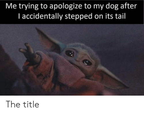 tail: Me trying to apologize to my dog after  I accidentally stepped on its tail The title