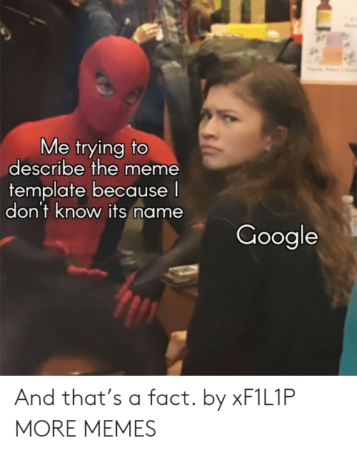 Meme Template: Me trying to  describe the meme  template because  don't know its name  Google And that's a fact. by xF1L1P MORE MEMES