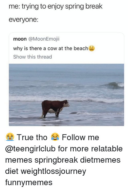 Memes, True, and Spring Break: me: trying to enjoy spring break  everyone:  moon @MoonEmojii  why is there a cow at the beach  Show this thread 😭 True tho 😂 Follow me @teengirlclub for more relatable memes springbreak dietmemes diet weightlossjourney funnymemes