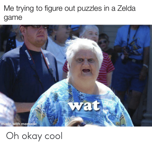 Reddit, Wat, and Cool: Me trying to figure out puzzles in a Zelda  game  wat  made with mematic Oh okay cool