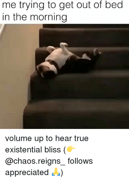 Volume Up: me trying to get out of bed  in the morning volume up to hear true existential bliss (👉@chaos.reigns_ follows appreciated 🙏)
