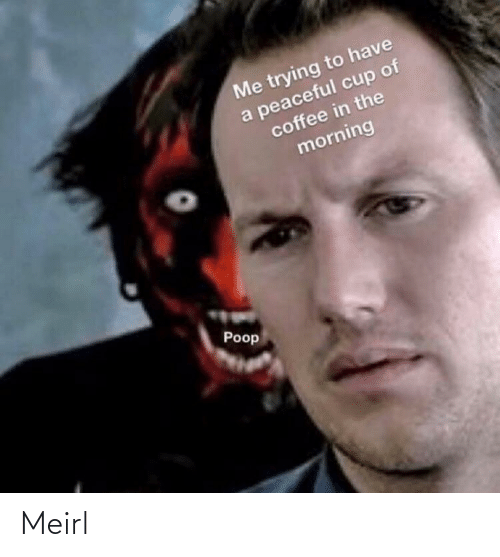 Poop: Me trying to have  a peaceful cup of  coffee in the  morning  Poop Meirl