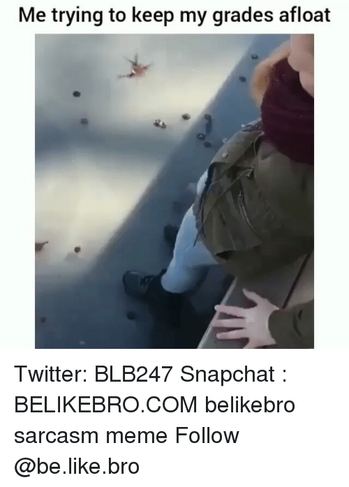 Be Like, Meme, and Memes: Me trying to keep my grades afloat Twitter: BLB247 Snapchat : BELIKEBRO.COM belikebro sarcasm meme Follow @be.like.bro