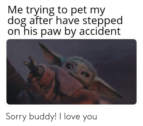 paw: Me trying to pet my  dog after have stepped  on his paw by accident Sorry buddy! I love you