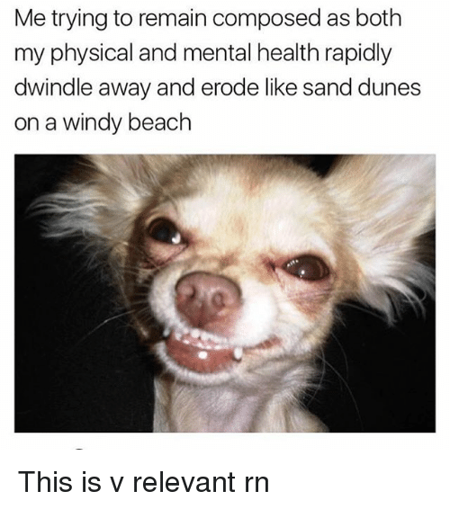 Memes, 🤖, and Mental Health: Me trying to remain composed as both  my physical and mental health rapidly  dwindle away and erode like sand dunes  on a windy beach This is v relevant rn