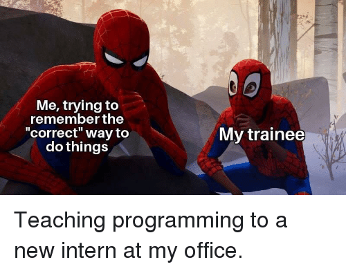 """intern: Me, trying to  remember the  correct"""" way to  do things  My trainee Teaching programming to a new intern at my office."""