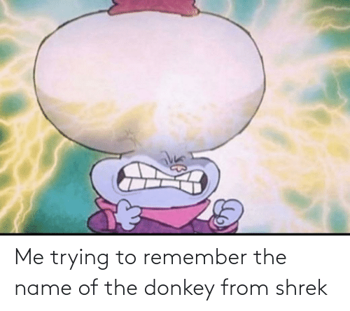 name of: Me trying to remember the name of the donkey from shrek