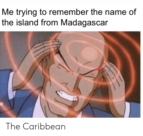 caribbean: Me trying to remember the name of  the island from Madagascar The Caribbean