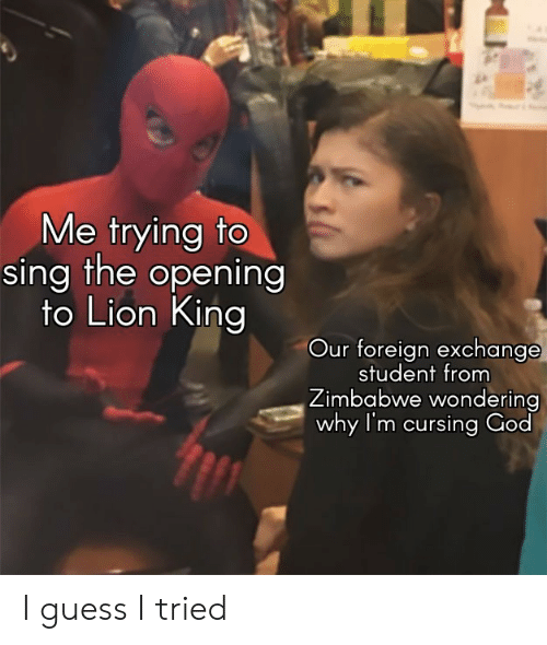 zimbabwe: Me trying to  sing the opening  to Lion King  Our foreign exchange  student from  Zimbabwe wondering  why I'm cursing God I guess I tried