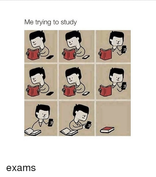 Girl Memes: Me trying to study exams