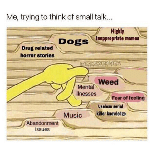 Dogs, Memes, and Weed: Me, trying to think of small talk..  Highly  Inappropriate memes  DogS  Drug related  horror stories  Weed  Mental  illnesses Fear of  Useless serial  Musickiller knowledge  Abandonment  issues
