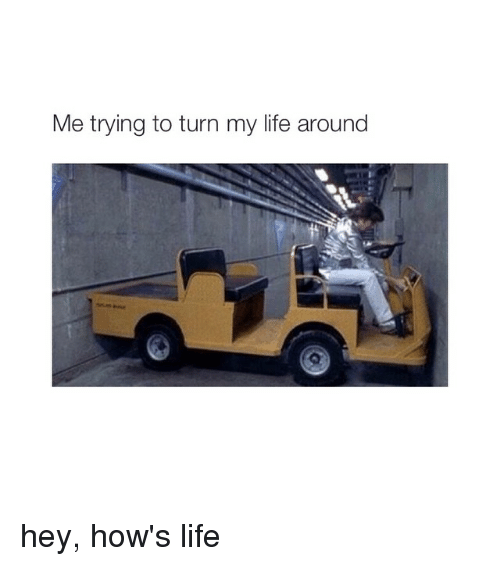 Girl Memes: Me trying to turn my life around hey, how's life