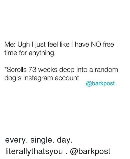 singles day: Me: Ugh l just feel like I have NO free  time for anything.  *Scrolls 73 weeks deep into a random  dog's Instagram account  @bark post every. single. day. literallythatsyou . @barkpost