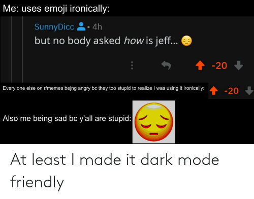 Yall Are Stupid: Me: uses emoji ironically:  SunnyDicc 2• 4h  but no body asked how is jeff...  -20  Every one else on r/memes bejng angry bc they too stupid to realize I was using it ironically:  -20.  -20  Also me being sad bc y'all are stupid: At least I made it dark mode friendly