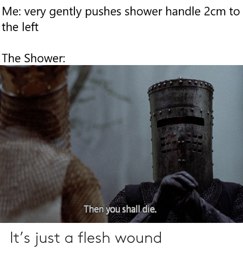 Flesh: Me: very gently pushes shower handle 2cm to  the left  The Shower:  Then you shall die. It's just a flesh wound
