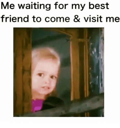 Best Friend, Memes, and Best: Me waiting for my best  friend to come & visit me