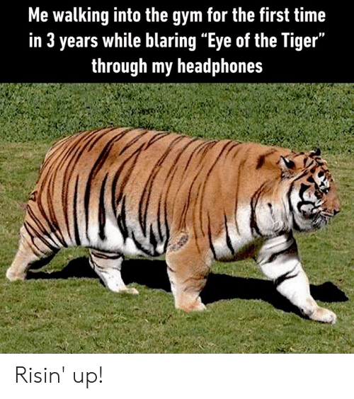 """Eye Of The Tiger: Me walking into the gym for the first time  in 3 years while blaring """"Eye of the Tiger""""  through my headphones Risin' up!"""