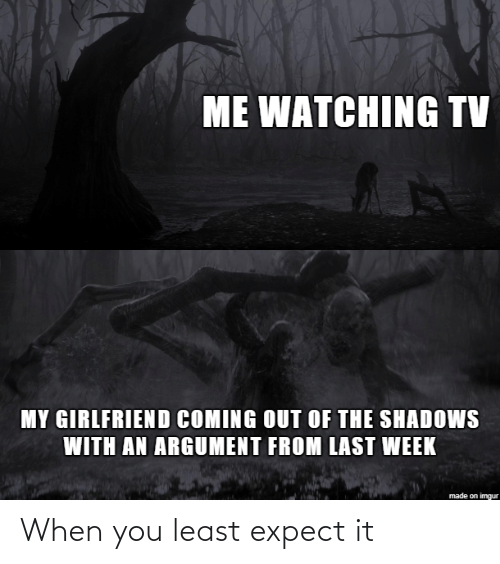 my girlfriend: ME WATCHING TV  MY GIRLFRIEND COMING OUT OF THE SHADOWS  WITH AN ARGUMENT FROM LAST WEEK  made on imgur When you least expect it