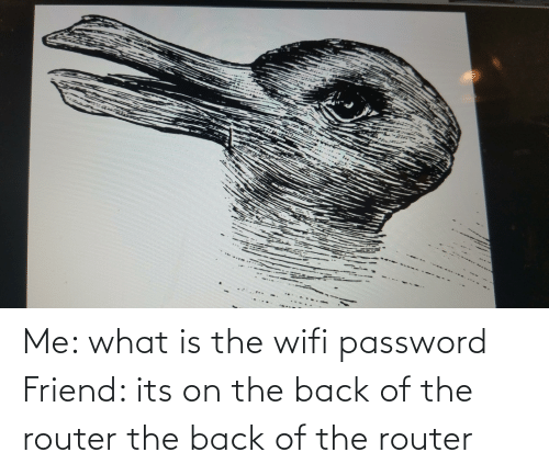 Router: Me: what is the wifi password Friend: its on the back of the router the back of the router
