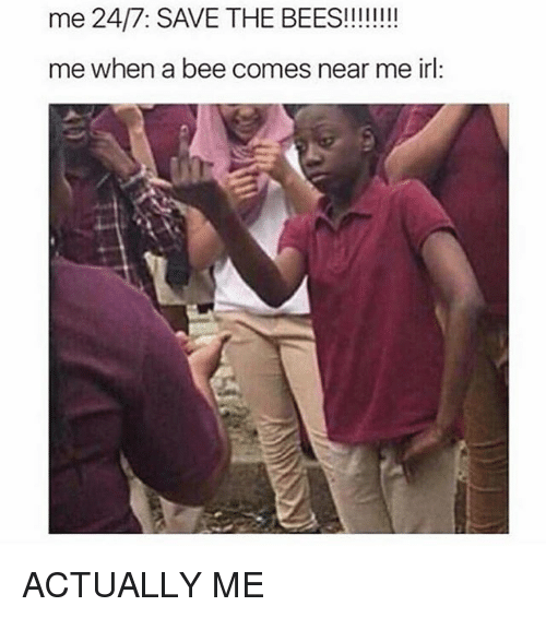 Memes, Irl, and Me IRL: me when a bee comes near me irl: ACTUALLY ME