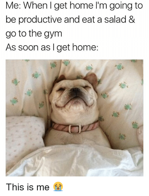 Gym, Memes, and Soon...: Me: When I get home I'm going to  be productive and eat a salad 8&  go to the gym  As soon as I get home: This is me 😭