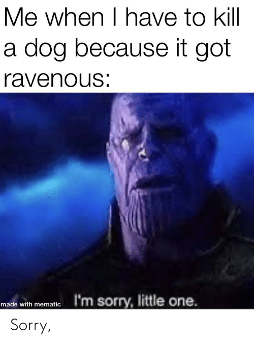 ravenous: Me when I have to kill  a dog because it got  ravenous:  I'm sorry, little one.  made with mematic Sorry,