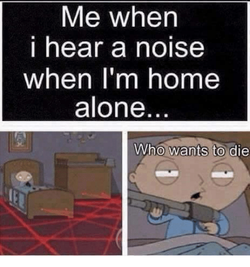 Being Alone, Home Alone, and Memes: Me when  i hear a noise  when I'm home  alone  Who wants to die
