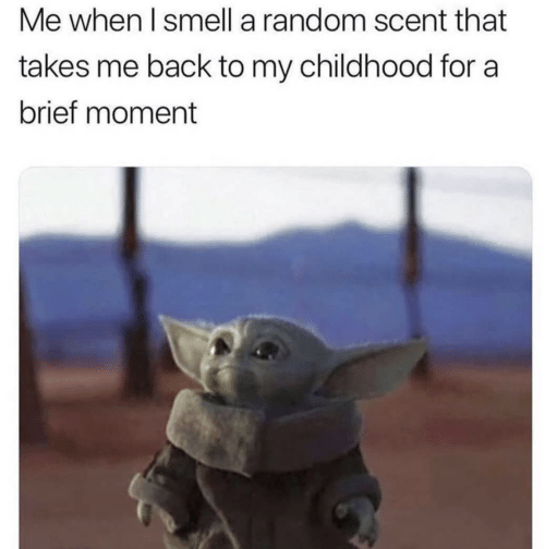 my childhood: Me when I smell a random scent that  takes me back to my childhood for a  brief moment