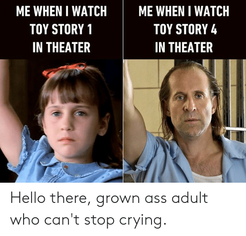 Toy Story 4: ME WHEN I WATCH  ME WHEN I WATCH  TOY STORY 4  TOY STORY 1  IN THEATER  IN THEATER Hello there, grown ass adult who can't stop crying.