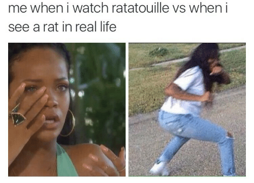 Ratatouille: me when i watch ratatouille vs when i  see a rat in real life